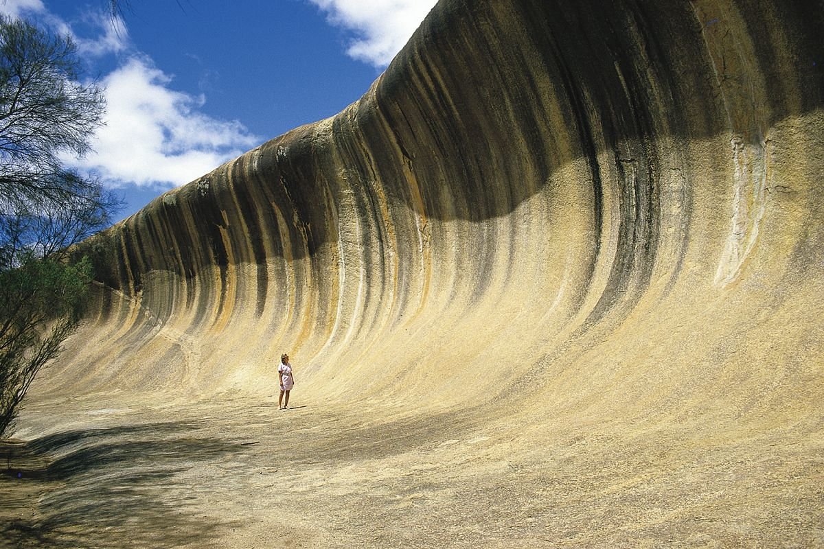 Wave Rock is a 100m-long and 15m-tall granite rock formation which looks like a giant wave about to crash on the surrounding bush.