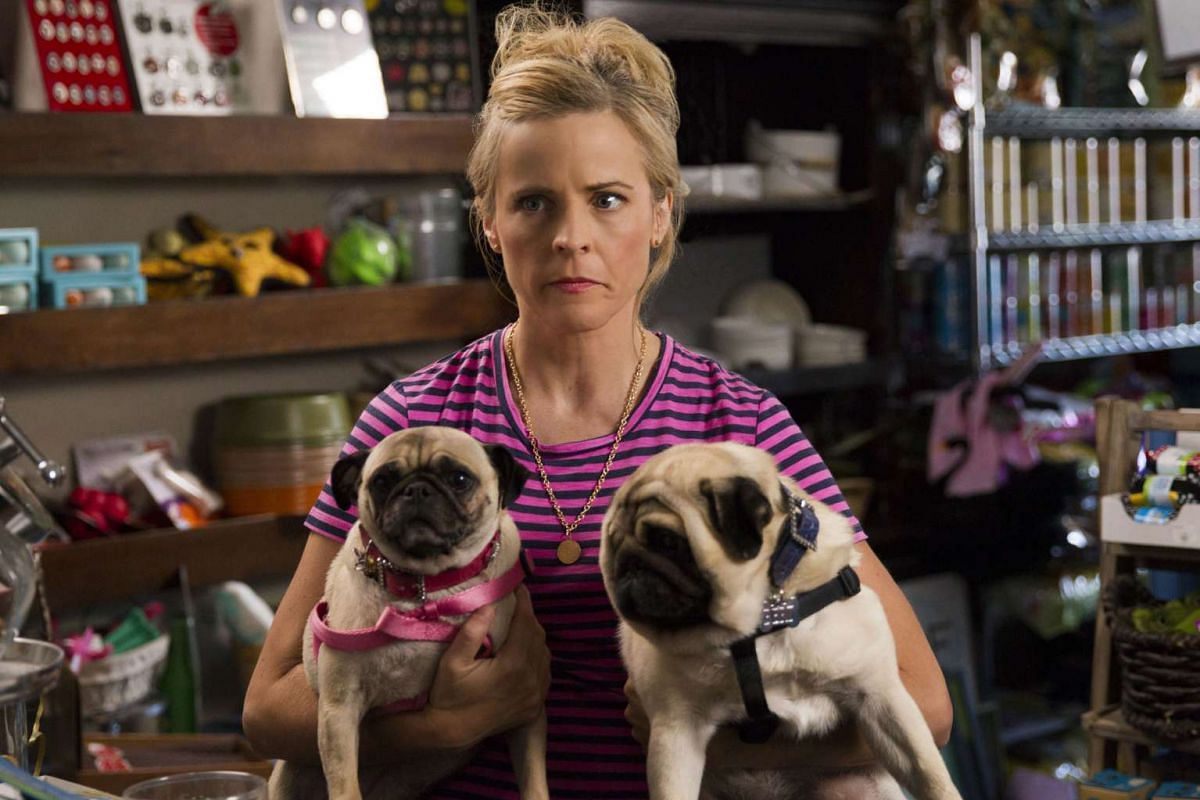 The Netflix comedy mockumentary Lady Dynamite is based on the life of American stand-up comic Maria Bamford (above).