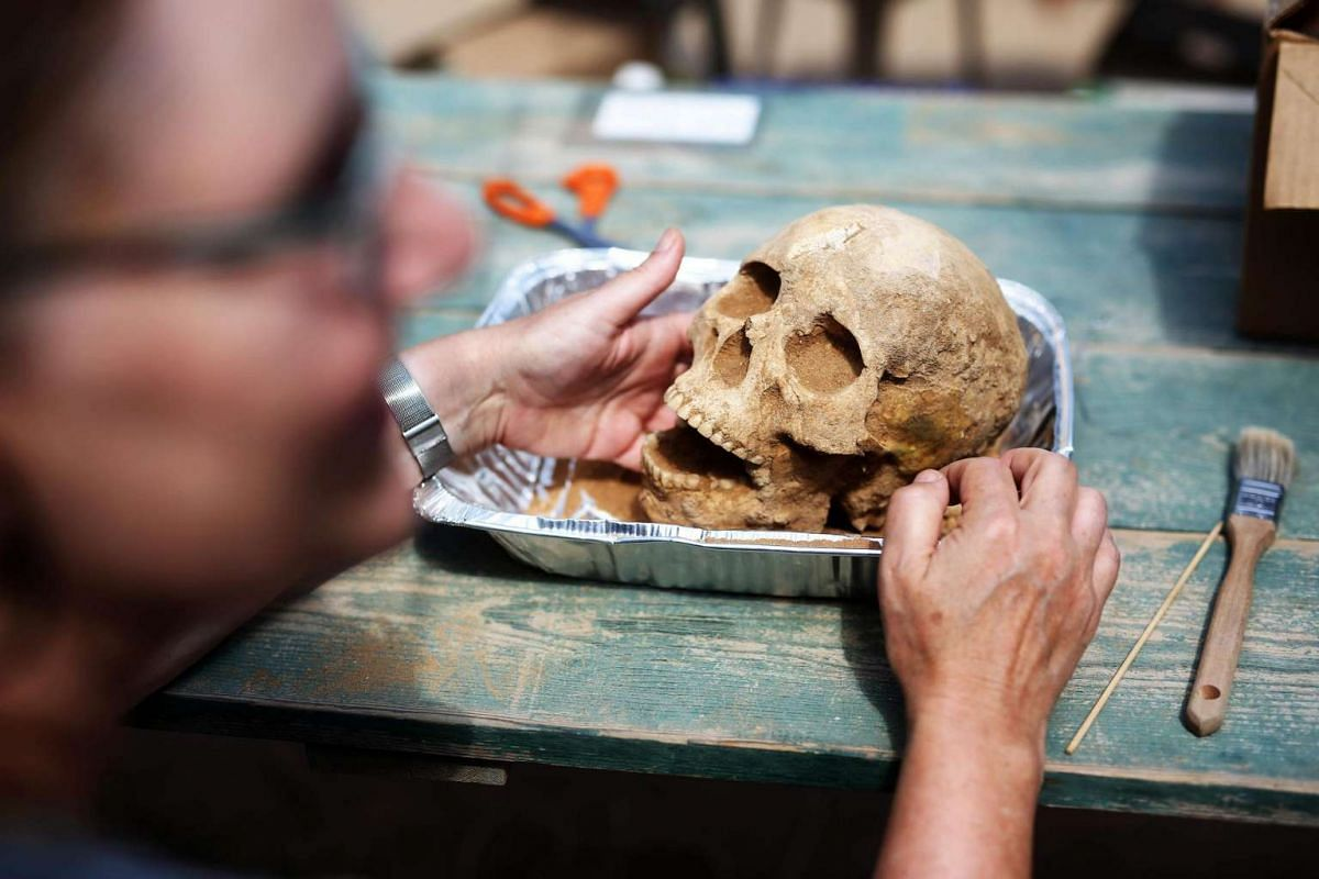 US anthropologist and pathologist Sherry Fox showing a skull that was discovered at the excavation site at the Philistine cemetery, on June 28, 2016.