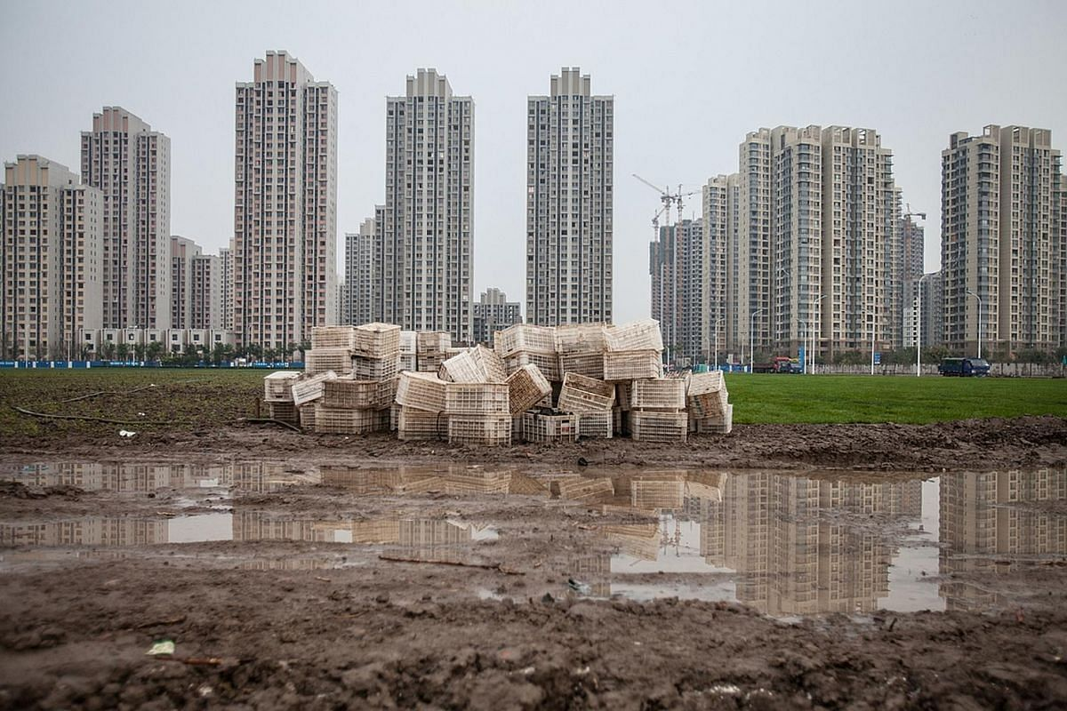 Bulldozers unloading industrial waste near Pier 14 in Wanwuzhen, a mudflat area in Ningde city, Fujian province, in June last year. This area was once home to aquaculture farms but was later taken over by a corporation. Activists simulating the movie
