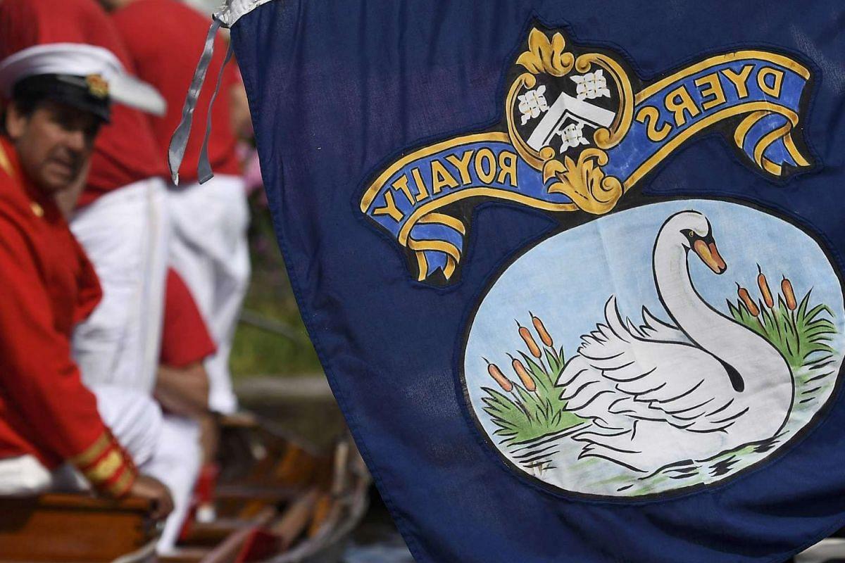 Livery featuring a swan is seen on a boat flag during Swan Upping along the River Thames, near Shepperton, southern England, on July 18, 2016.