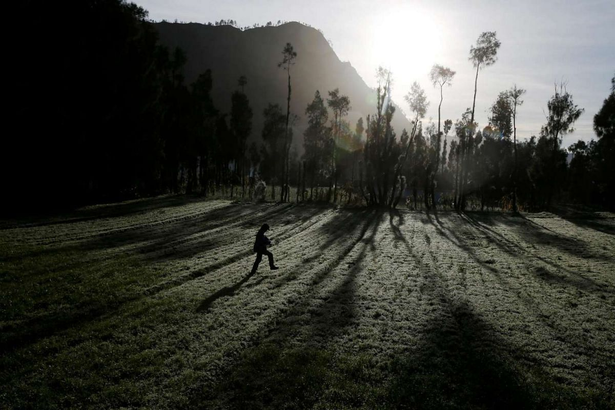 A Hindu villager heads to Mount Bromo ahead of Kasada ceremony, when villagers and worshippers throw offerings such as livestock and other crops into the volcanic crater of Mount Bromo, in Probolinggo, Indonesia, on July 20, 2016.