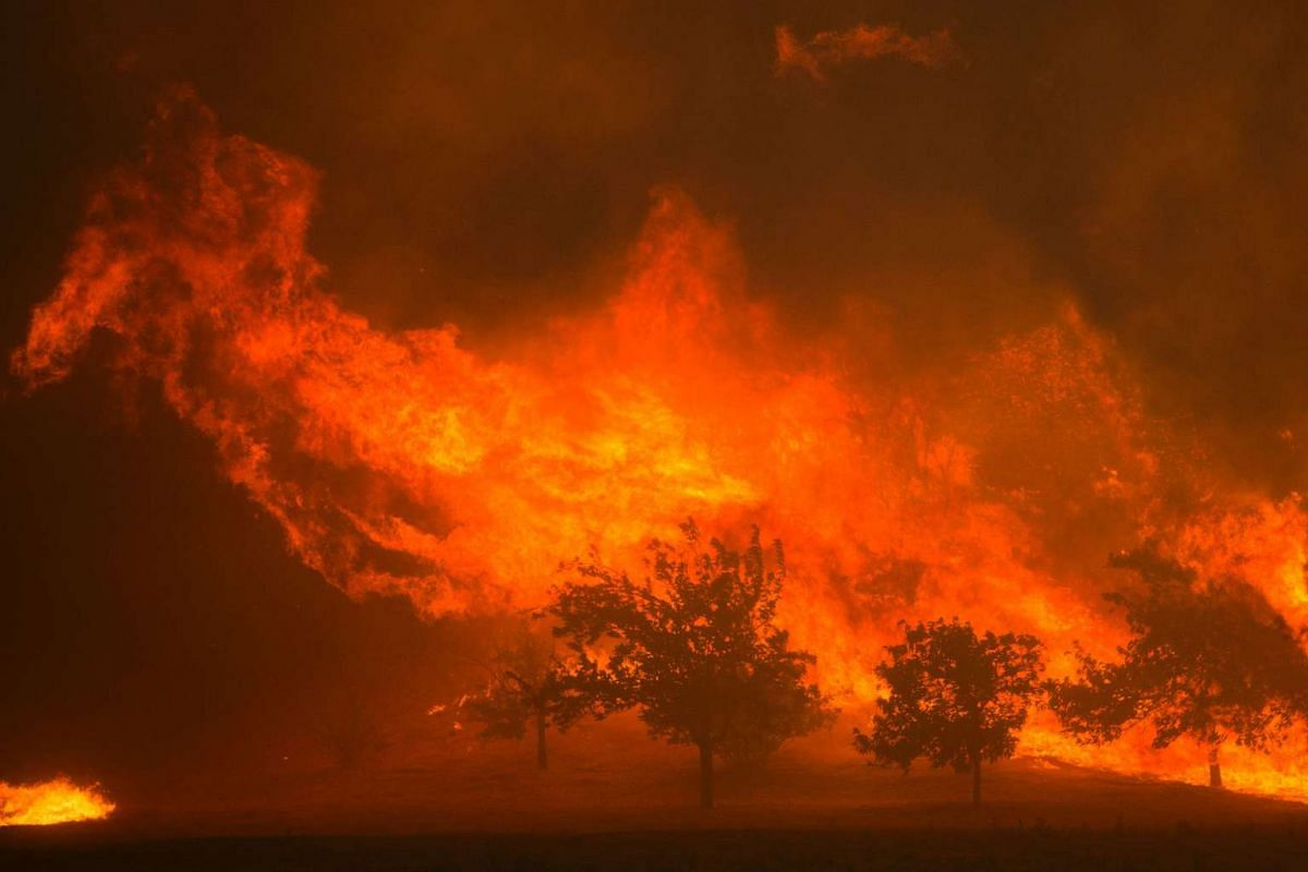 Flames blown by strong winds close in on homes at the Sand Fire on July 23, 2016 near Santa Clarita, California.