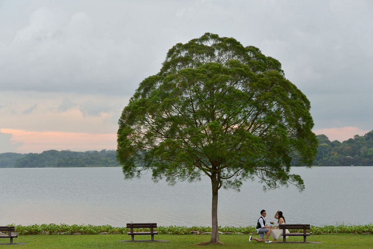5 This reservoir was built in 1920 and was officially opened by Princess Alexandra, the cousin of Queen Elizabeth II, on Aug 10, 1969. It was renamed in 1992 and became a marked historic site in 1999. The lone tree between two benches is an iconic landmar