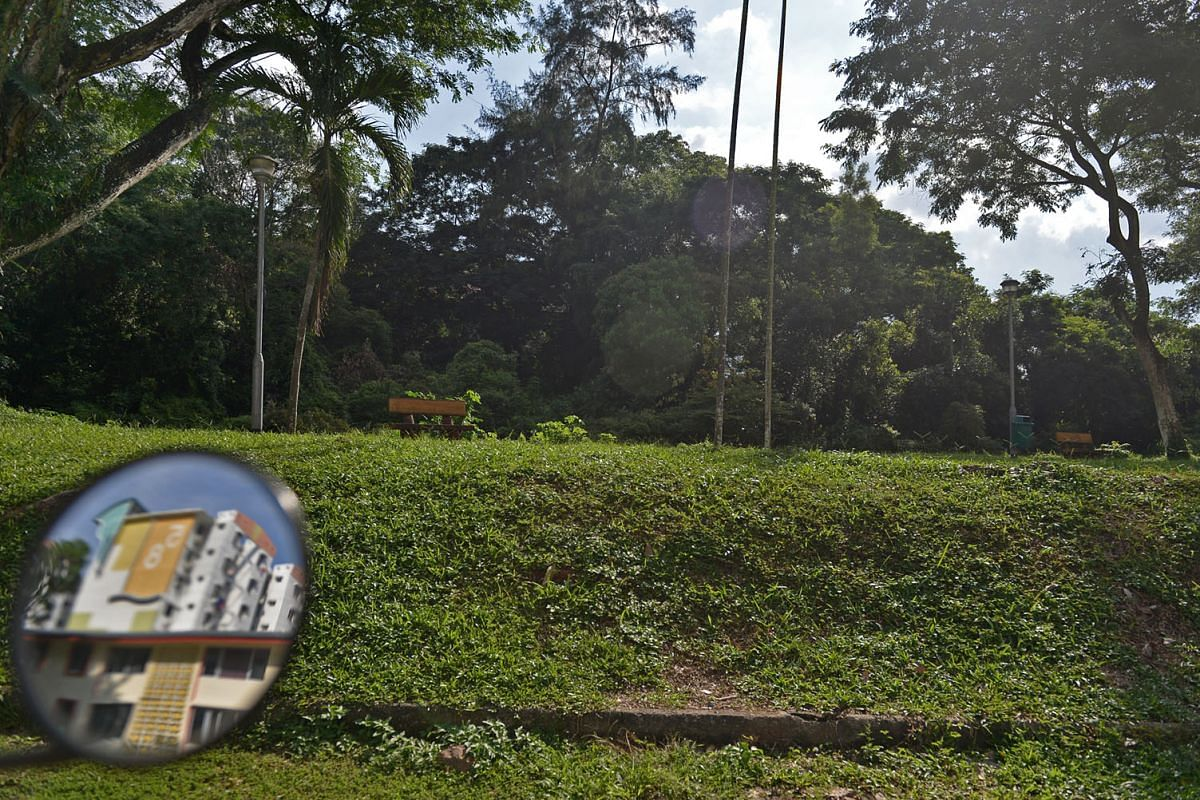 6 This spot sits along a 24km stretch of greenery that cuts through the first satellite town in Singapore. The quaint estate will be undergoing changes in the next few years as it is redeveloped under the Selective En Bloc Redevelopment Scheme. The remain