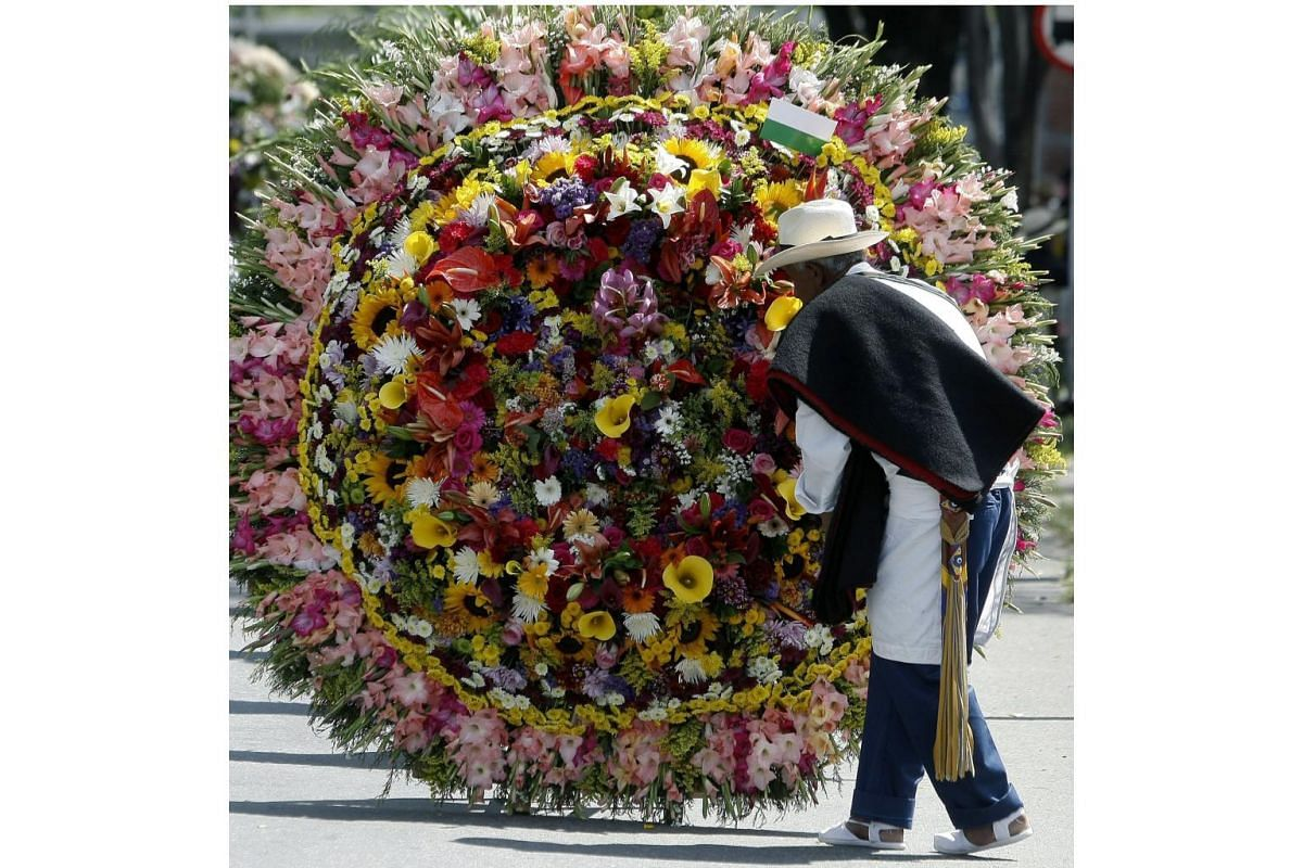 A man adjusts flowers during the Festival of the Flowers in Medellin on Aug 7, 2016.