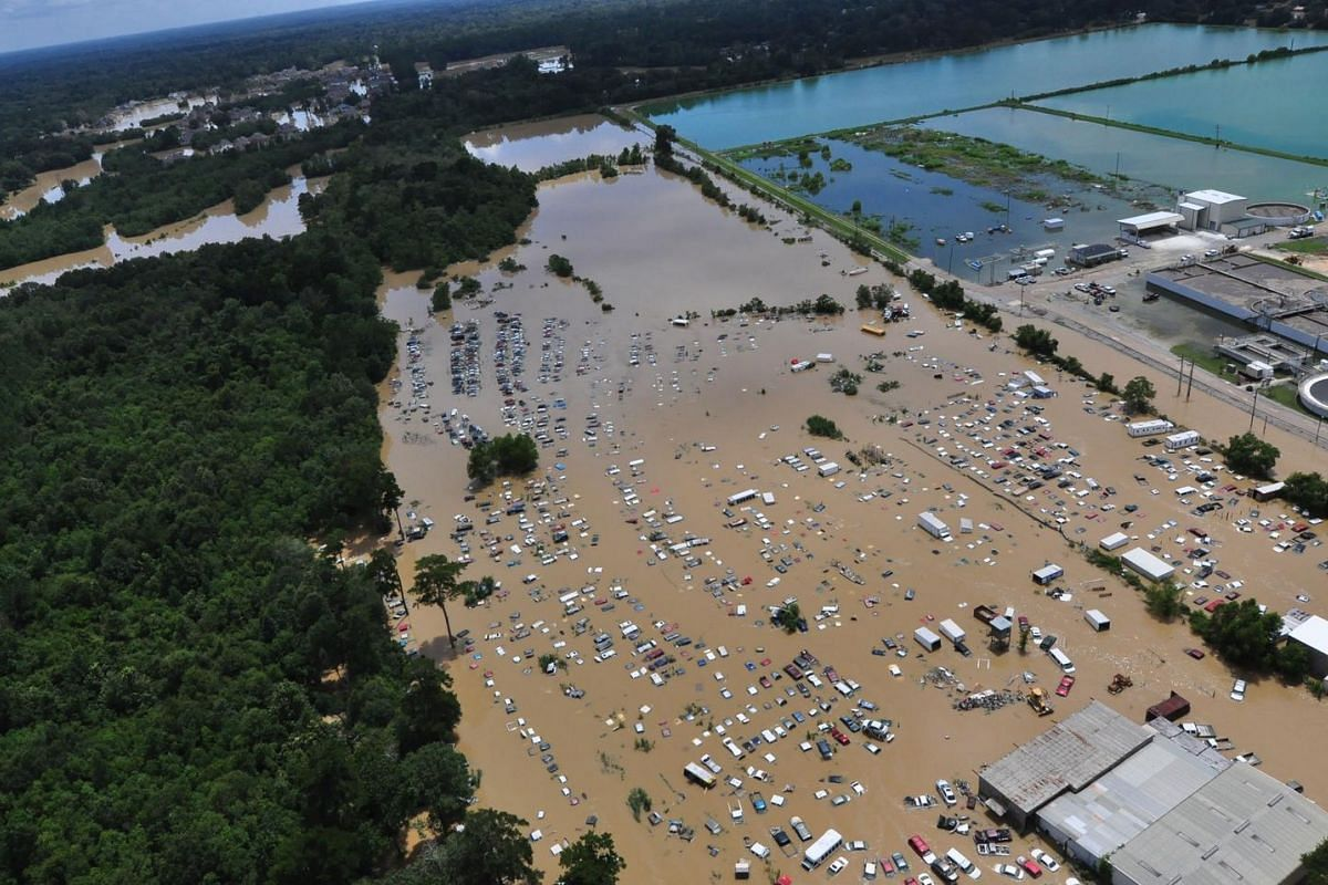 In this August 15 US Coast Guard handout photo, flooded areas of Baton Rouge, Louisiana, are seen from the air.