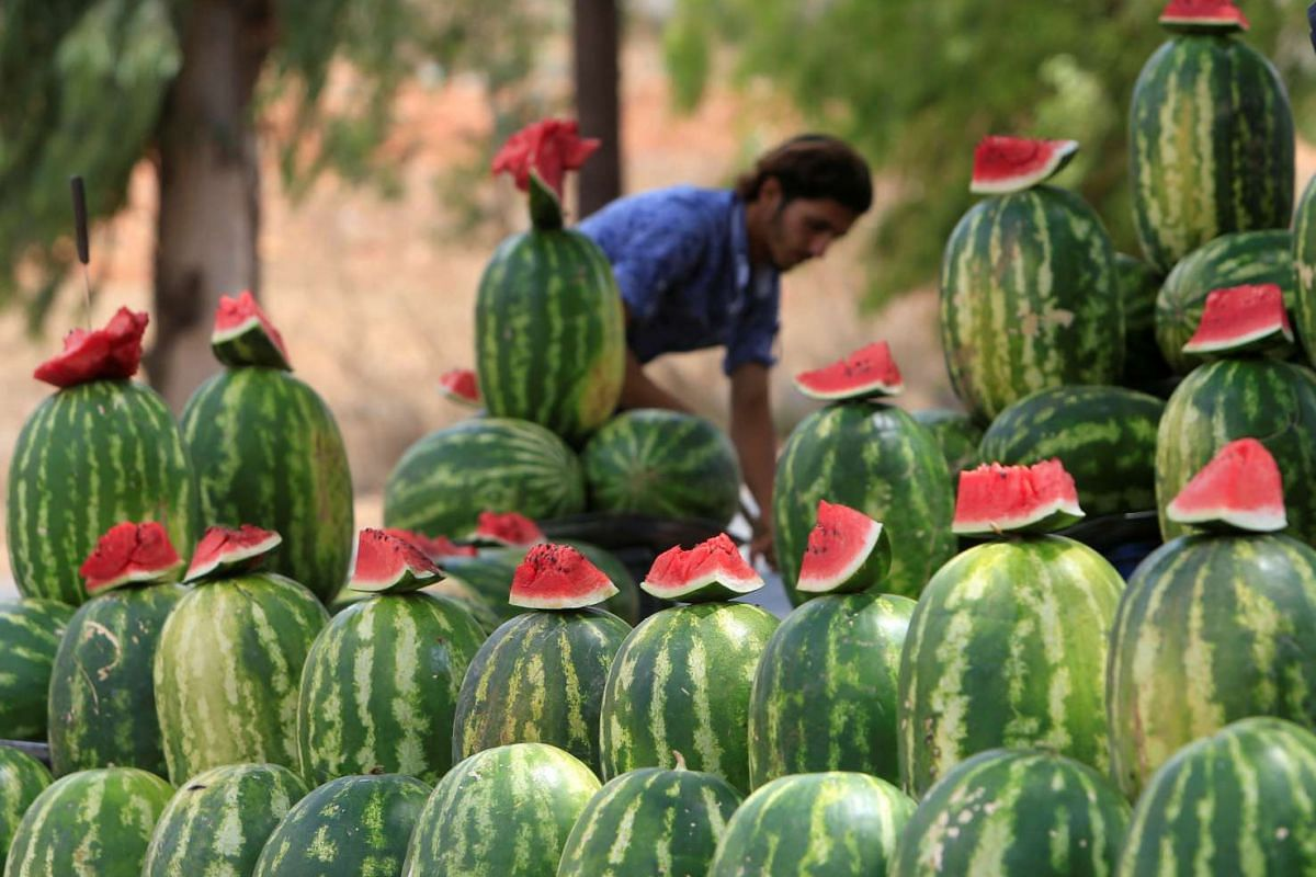 A vendor stands behind watermelons displayed for sale in Kfar Tebnit village, southern Lebanon, August 18, 2016. PHOTO: REUTERS