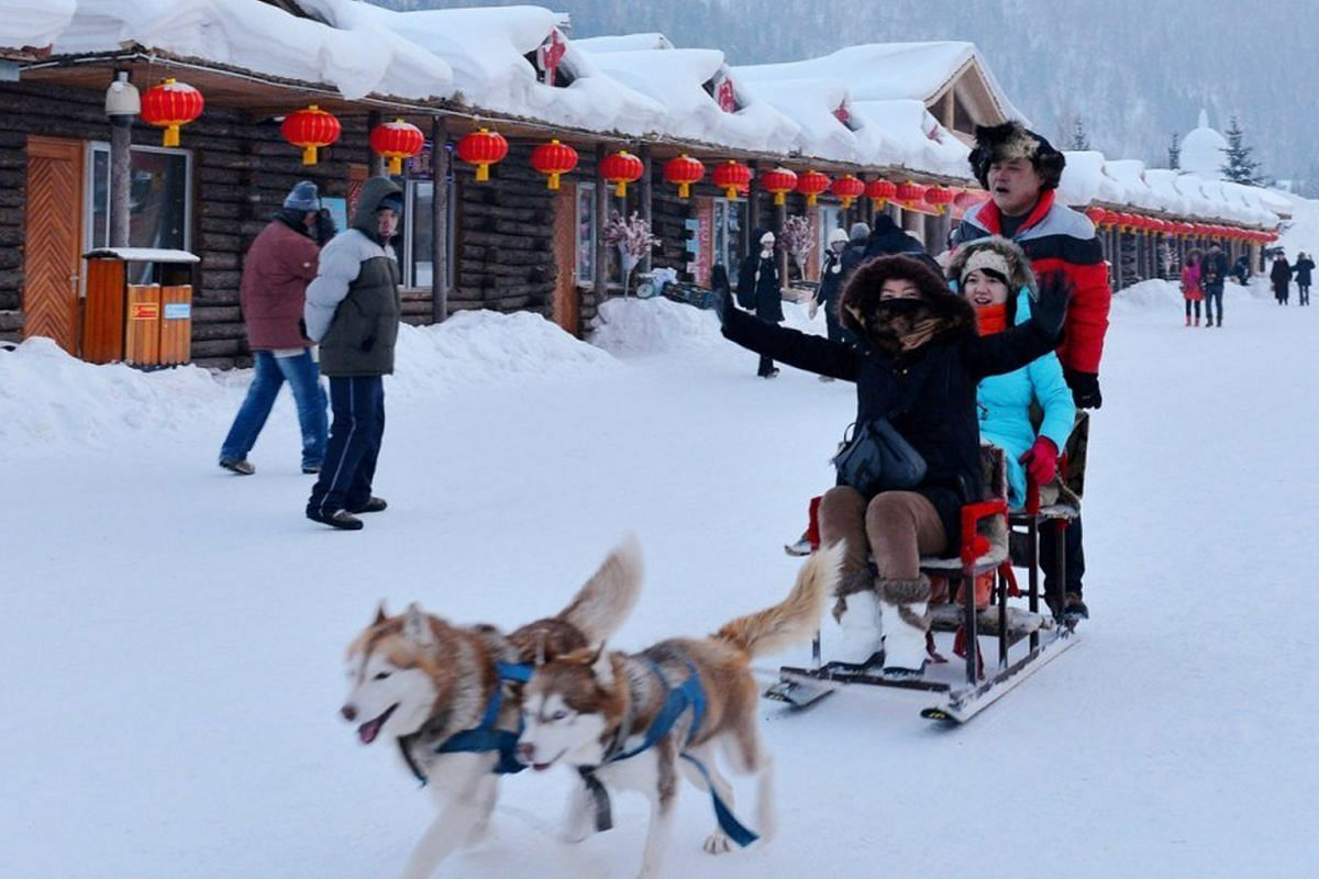 Snow Town, a quaint village in the mountains 280km outside Harbin, offers winter activities such as dog-sled riding.