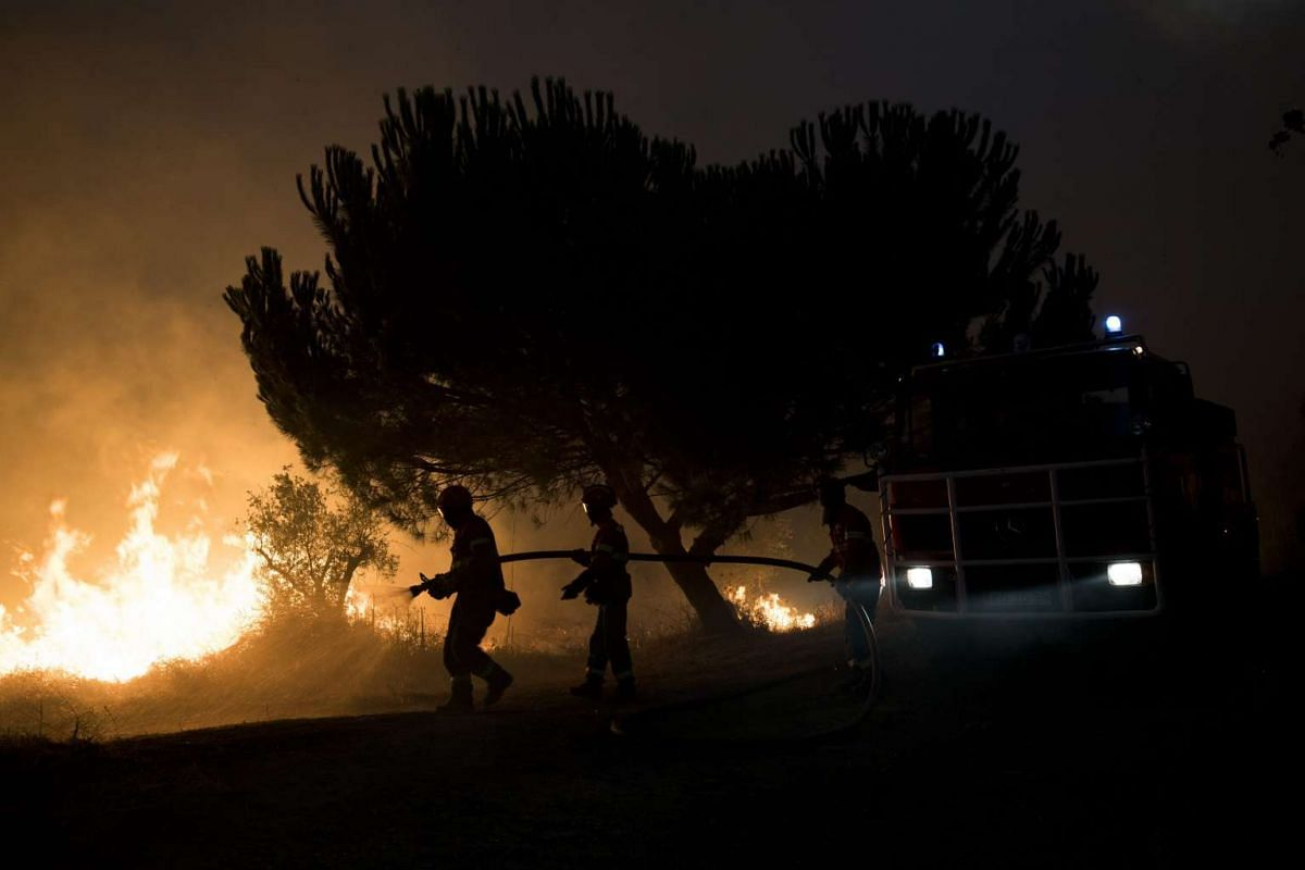 Firemen fight a forest fire near the village of Andreus, Abrantes municipality, in Portugal, on Aug 23, 2016.