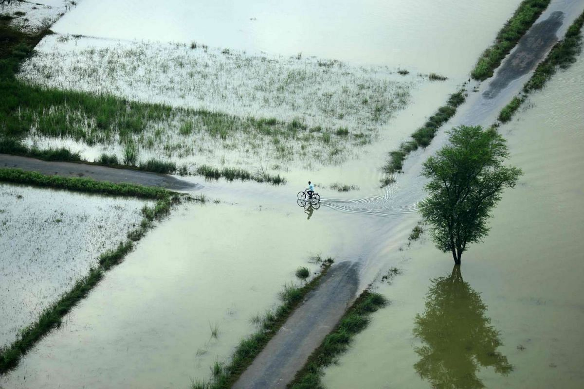 An Indian cyclist rides along a flooded road on the outskirts of Allahabad on Aug 25, 2016.