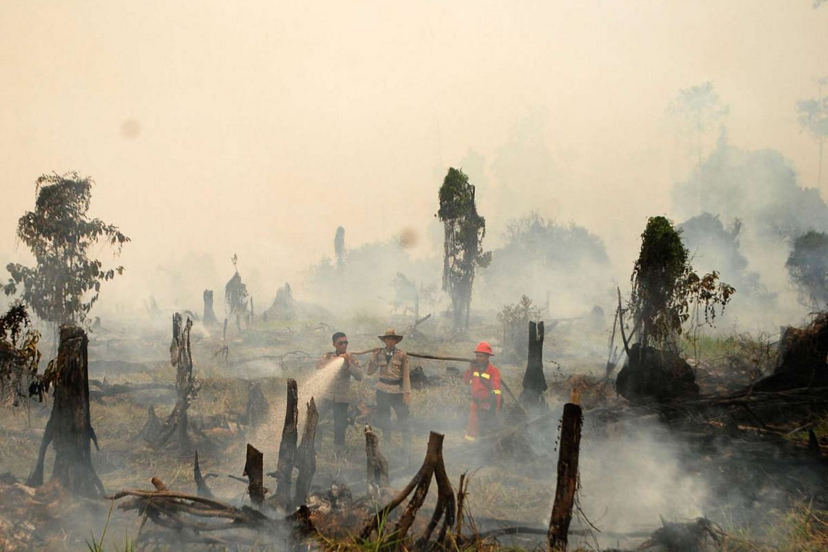 Police and a firefighter from a local forestry company try to extinguish a forest fire in the village in Rokan Hulu regency, Riau province, Sumatra, Indonesia on Aug 28, 2016.