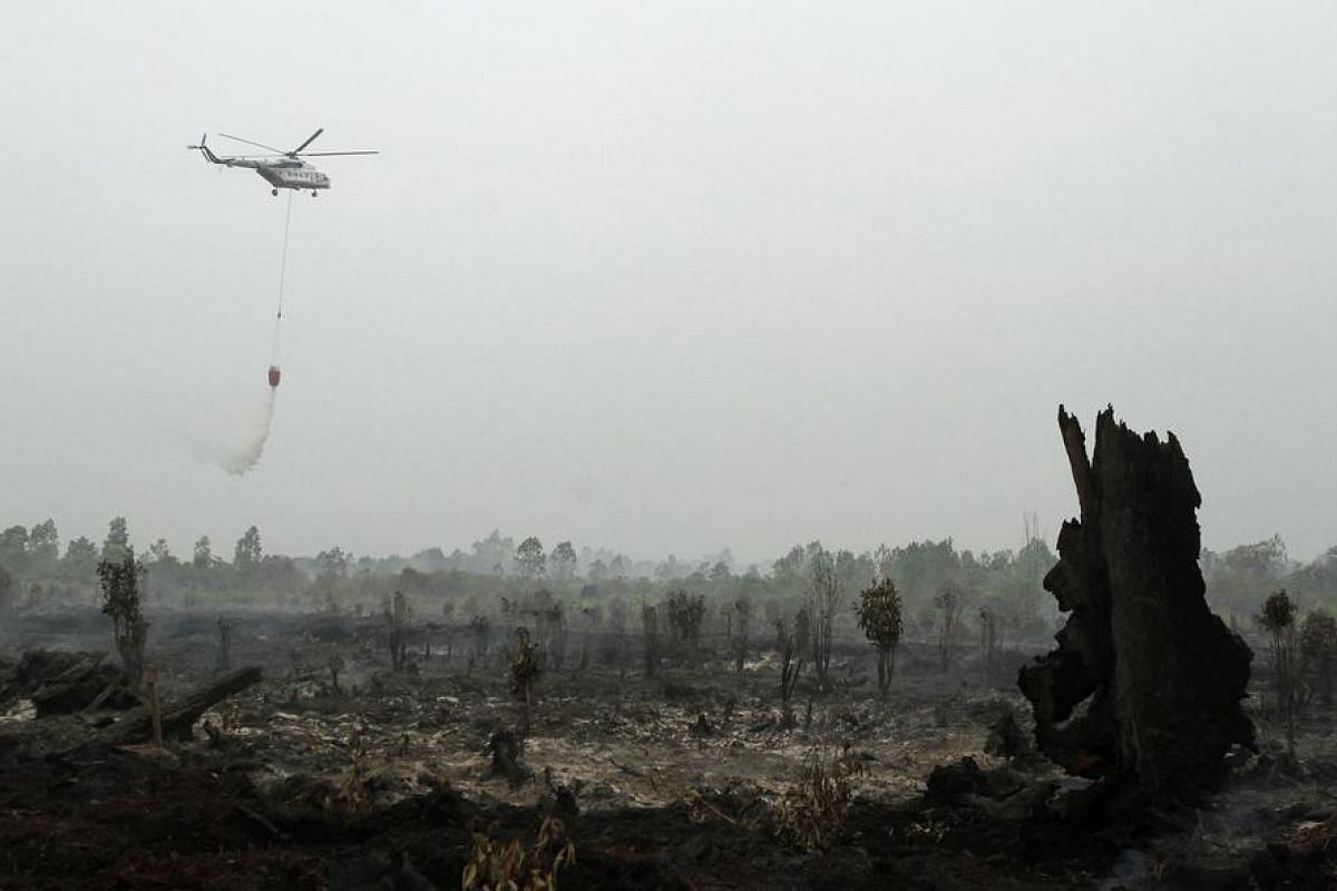 A helicopter operated by Indonesia's National Disaster Mitigation Agency (BNPB) sprays water on a fire in Kampar, Riau province on Aug 29.