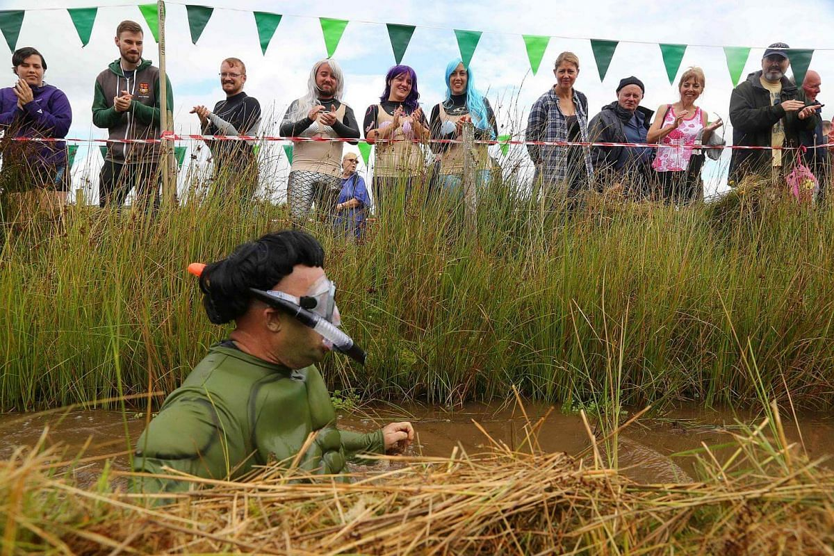 A man dressed as the Incredible Hulk swims the course during the World Bog Snorkelling Championships in Waen Rhydd peat bog at Llanwrtyd Wells, south Wales, on Aug 28.