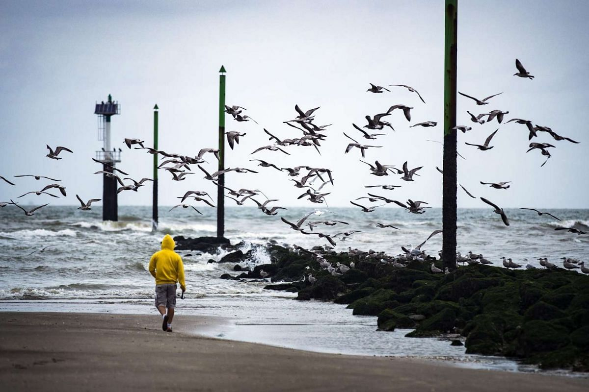 A fisherman walks on the beach in Deauville, France, on Sept 4, 2016.