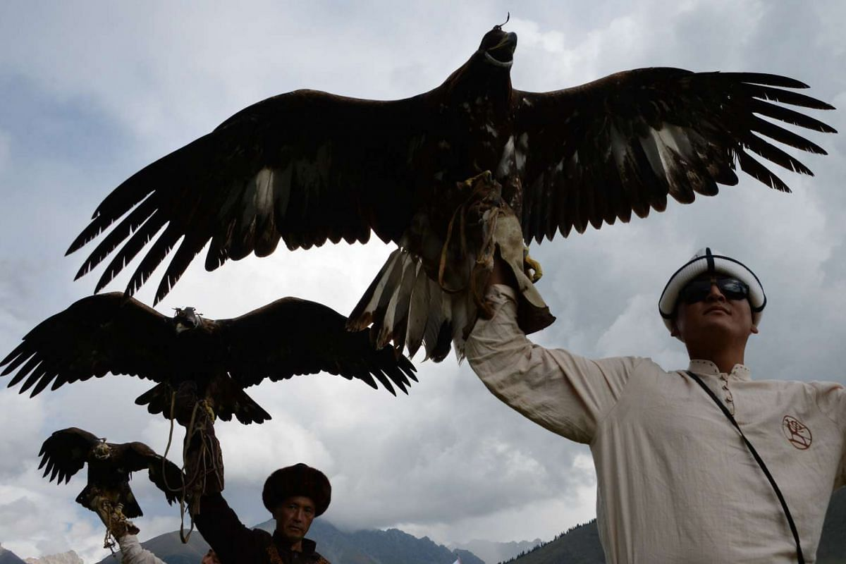 Berkutchi (eagle hunters) carry their birds, golden eagles, during the World Nomad Games 2016 in the Kyrchin (Semenovskoe) gorge, some 300 km from Bishkek on September 5, 2016. PHOTO:  AFP