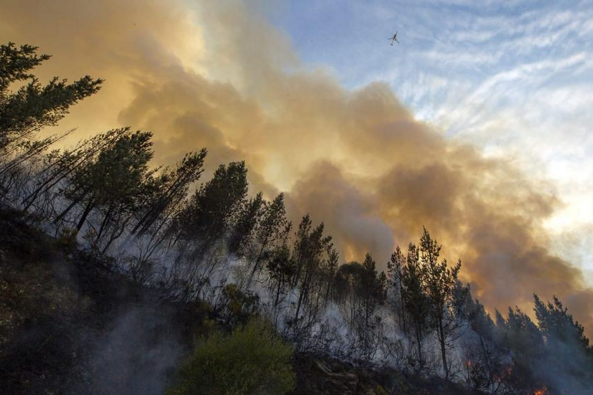 A plane flies over the forest fire near the village of A Fonsagra in Lugo, Galicia, northwestern Spain, Sept 7. The fire has already burned at least 80 hectares.