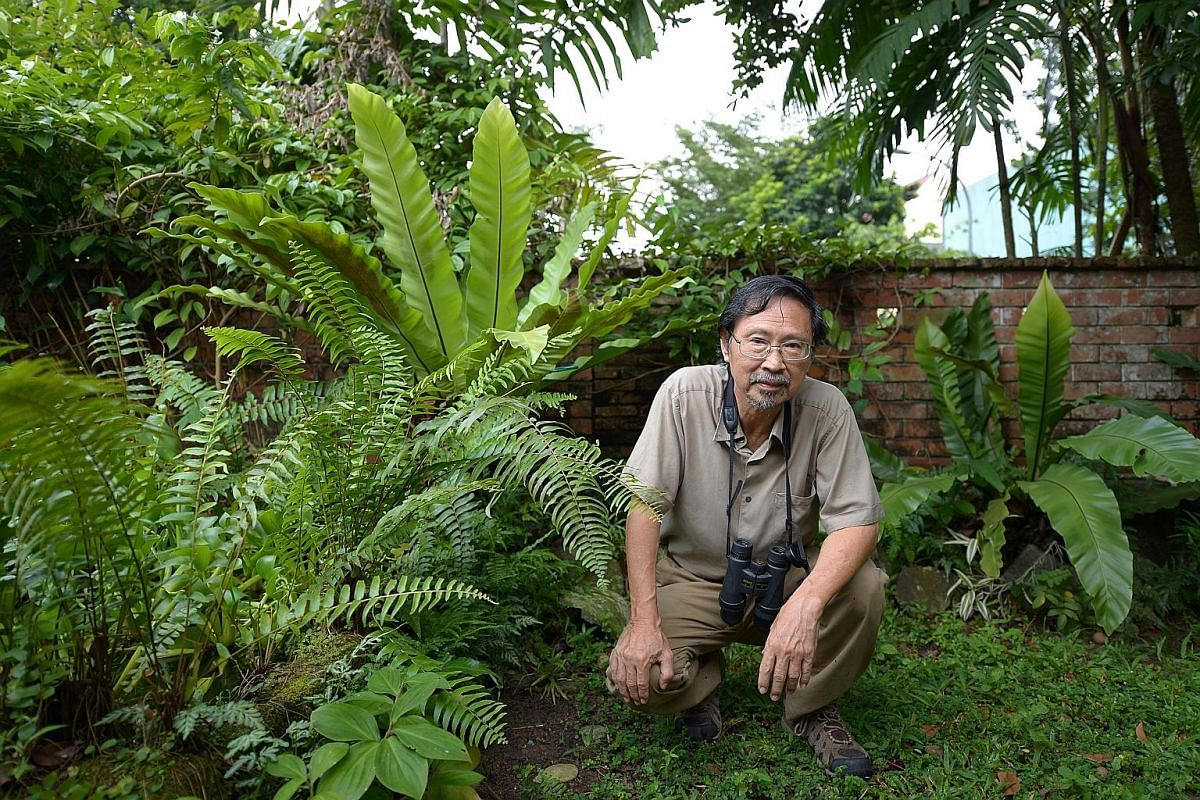 Dr Ho Hua Chew was part of a group of birdwatchers from the Nature Society (Singapore) who initiated a proposal to create a nature reserve in Sungei Buloh.