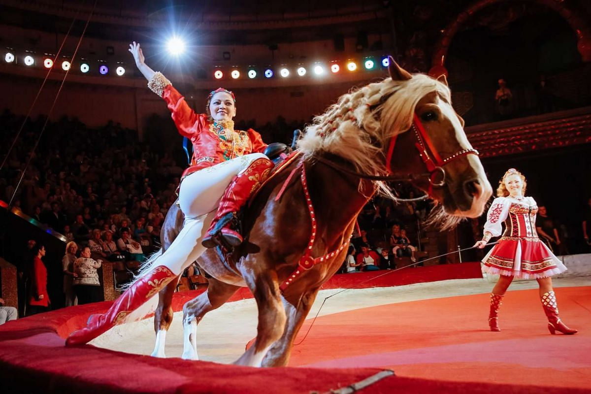 An artist performs with a horse during the presentation of the new international show The Extreme Arena at the National Circus in Kiev, Ukraine on Sept 15, 2016.