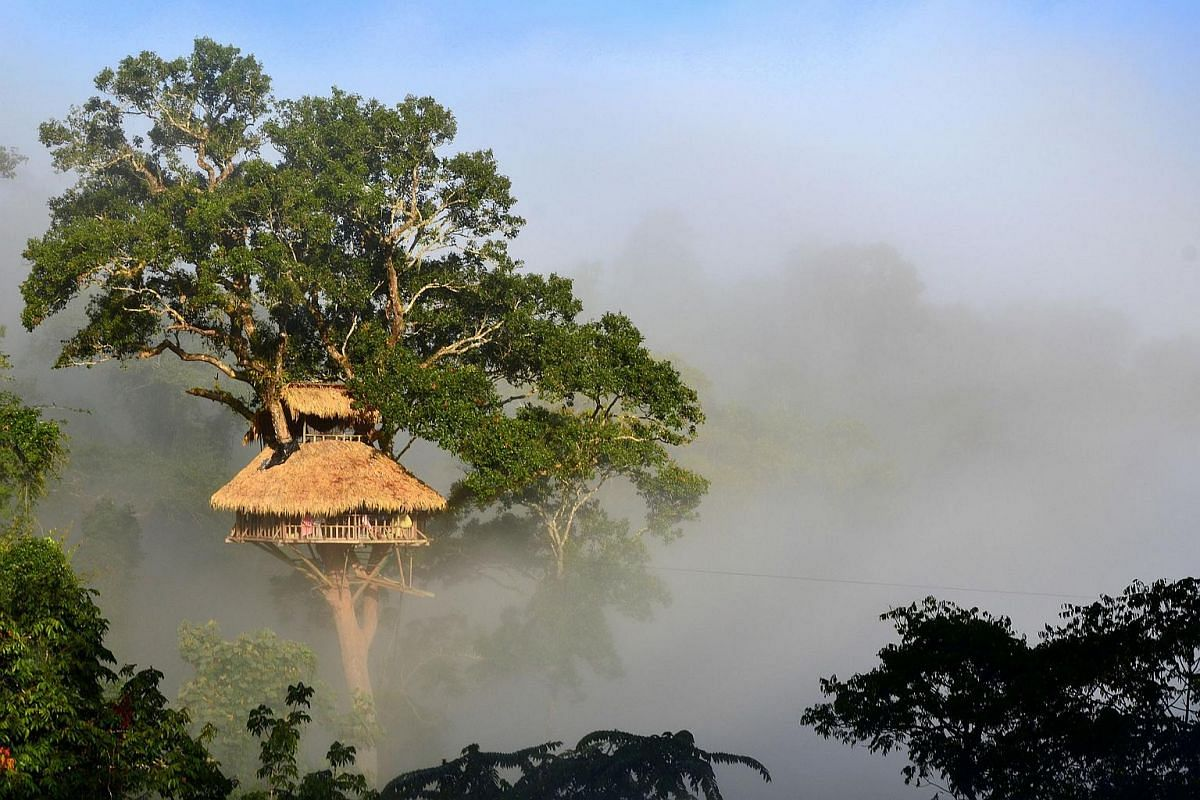 As part of the Gibbon Experience, you sleep in some of the tallest treehouses in the world deep in the jungle in northwest Laos.