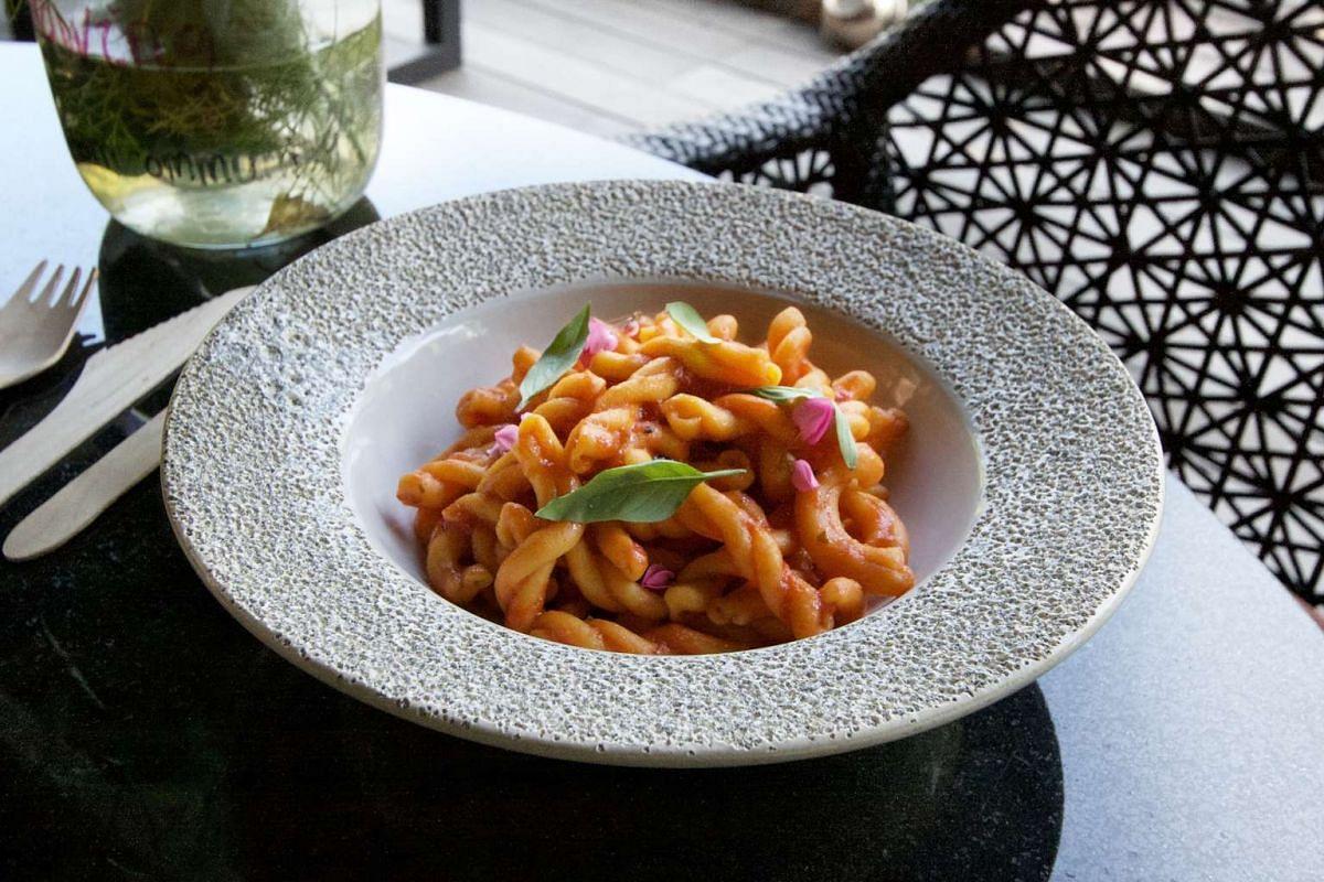Strozzapreti with tomato sauce (above) from Open Farm Community.