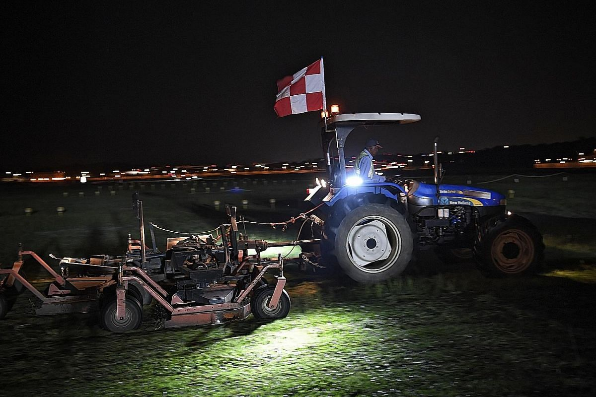 Cutting grass which covers 600ha, about half the airport's total land area, is critical to keep the birds away. The maximum height the grass is allowed to grow to is 15cm. Changi Airport intends to get a new machine that can cut the grass and collect