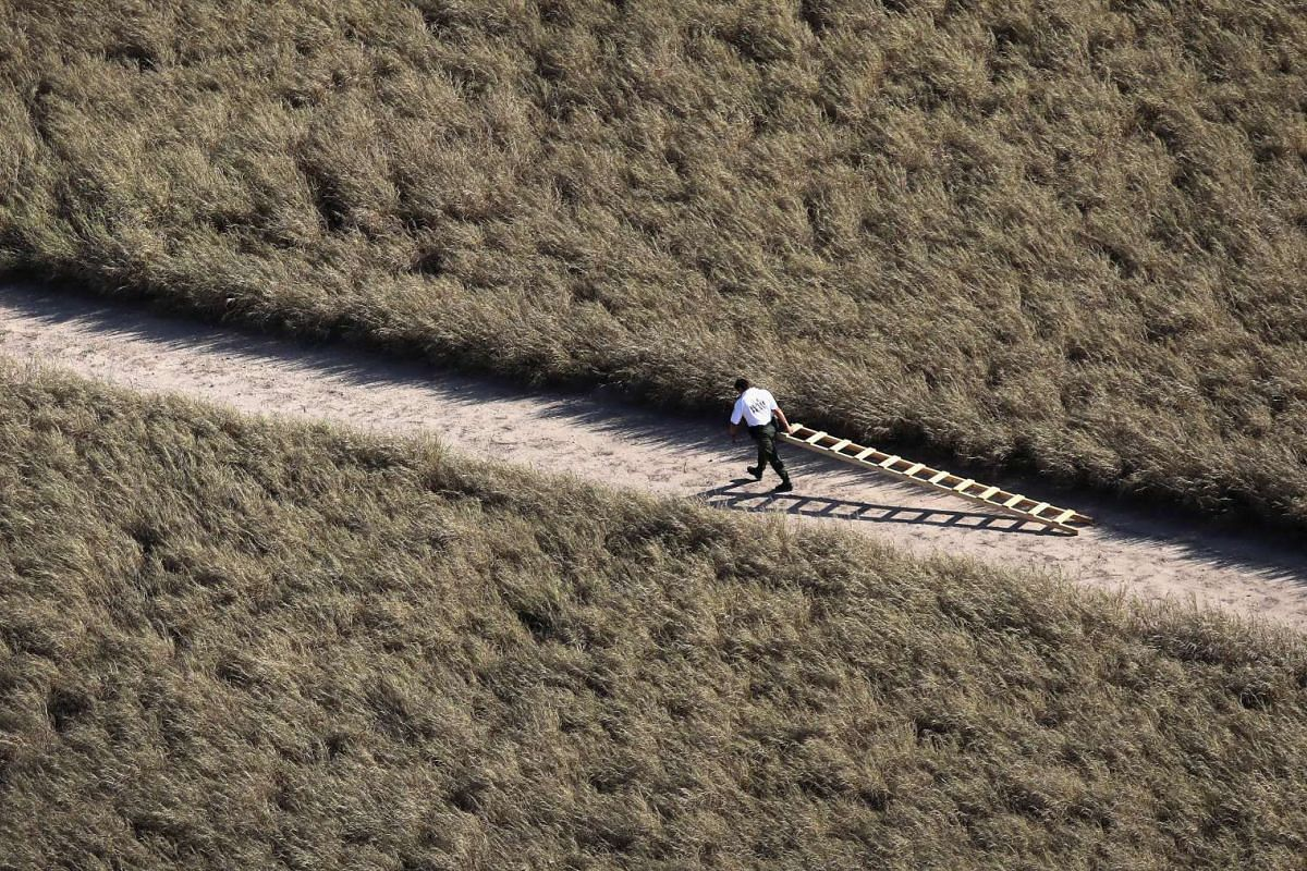A U.S. Border Patrol agent removes a ladder used by undocumented immigrants to climb a border fence on October 18, 2016 near McAllen, Texas. PHOTO: GETTY IMAGES/AFP