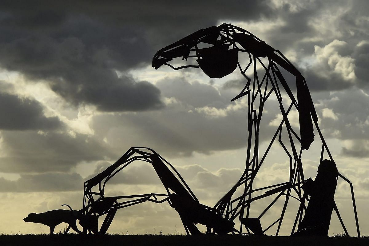 A dog relieves itself on the sculpture 'Transition', by Australian artist Harrie Fasher, in Sydney on Oct 20, 2016.