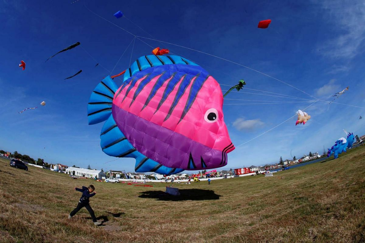 Kites of all shapes and sizes fill the air at the 22nd Cape Town International Kite Festival in Cape Town, South Africa on Oct 29, 2016.