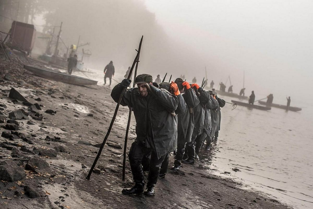 Czech fishermen pull a net during the traditional Carp haul at Lake Zablatsky, Czech Republic, on Oct 31, 2016.