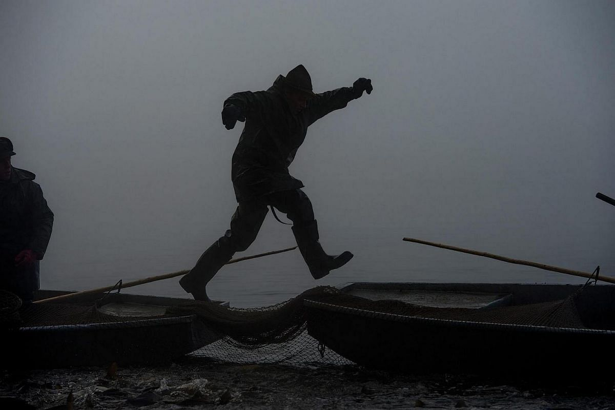 A Czech fisherman jumps over boats during the traditional Carp haul at Lake Zablatsky, Czech Republic, on Oct 31, 2016.