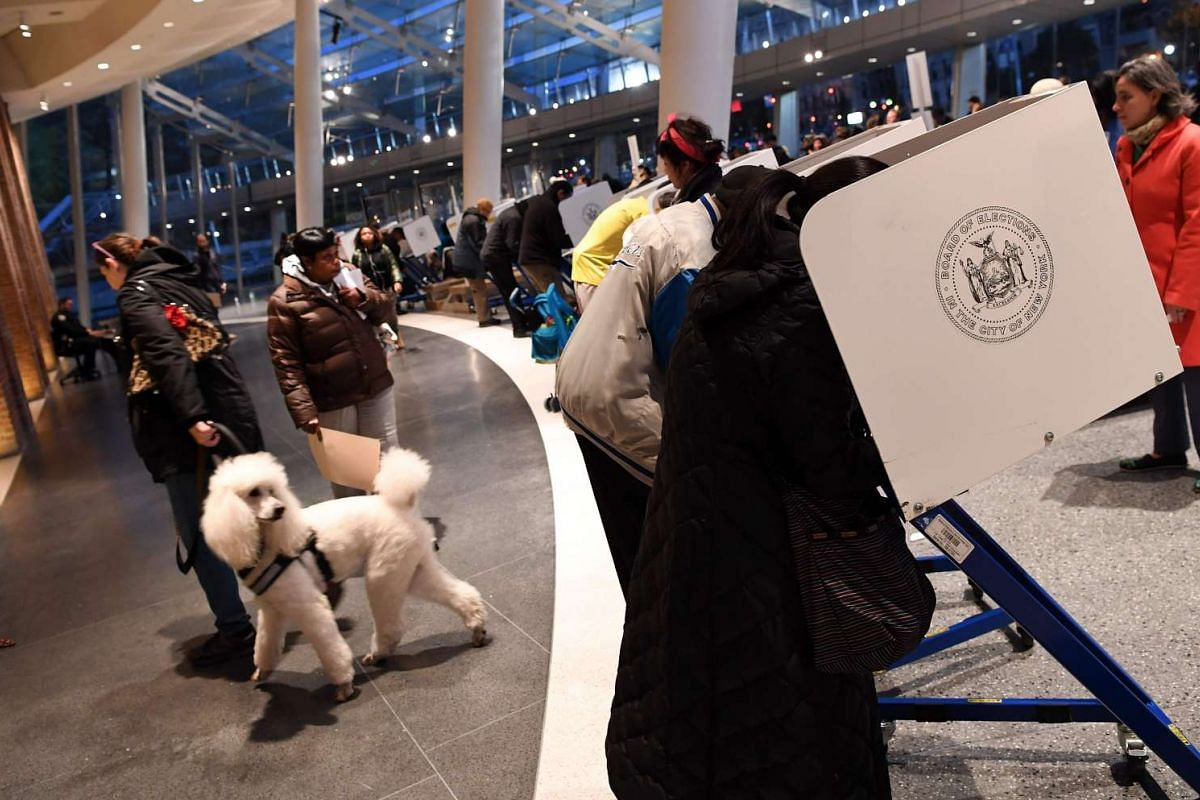 A dog walks by people voting at the Brooklyn Museum polling station in the Brooklyn borough of New York City on Nov 8, 2016.