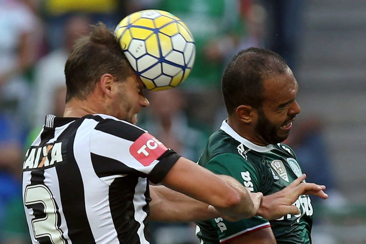 Palmeiras' Alecsandro (right) in action against Botafogo's Joel Carli in Brazilian championship at Allianz Parque stadium, Brazil, on Nov 20, 2016.