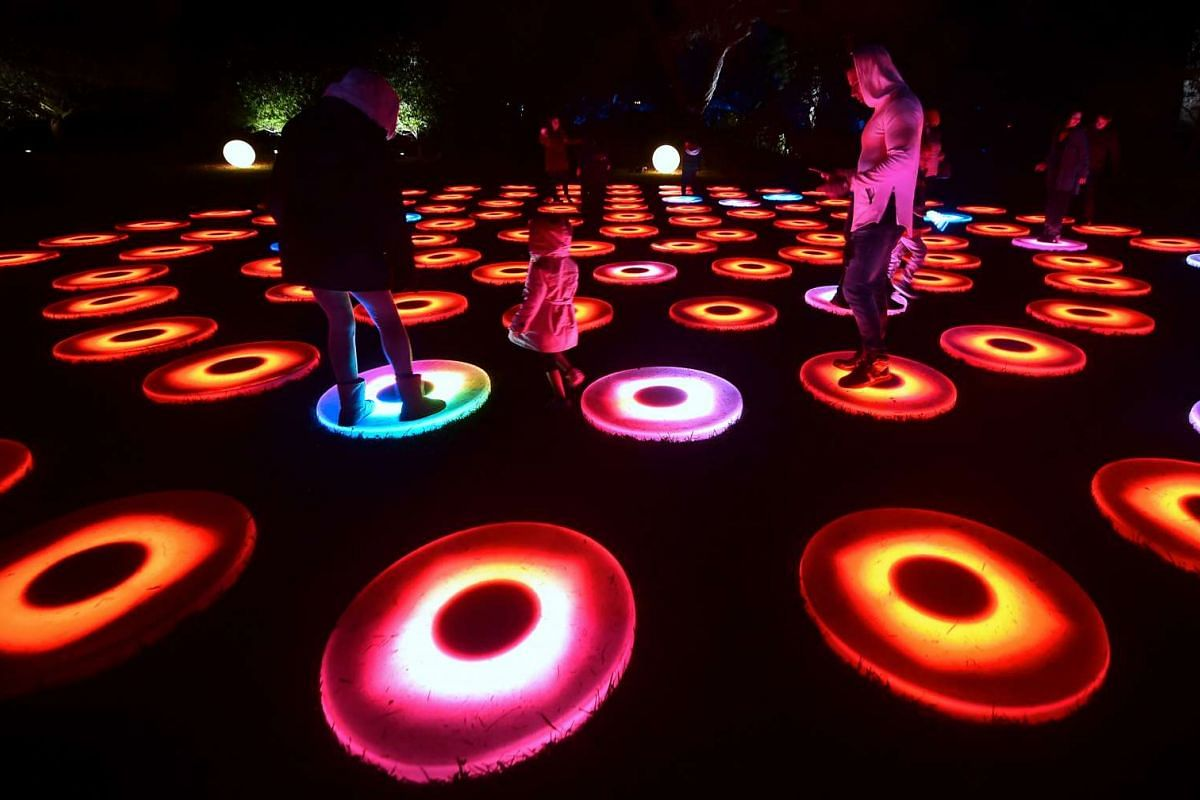 People visit the Enchanted Forest of Light preview at Descano Gardens in La Canada Flintridge, California on Nov 21, 2016 where Descano's hallmark oak trees and botanical collections will be lit for 43 nights starting Nov 25 to celebrate the festive