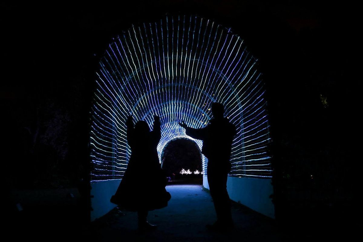 Models pose for a photograph in a tunnel of lights at Kew Gardens in west London, Britain on Nov 22, 2016.