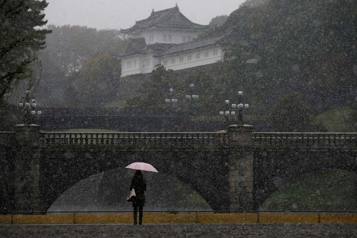 A tourist is seen during the first November snowfall in 54 years in Tokyo, at the Imperial Palace in Tokyo, Japan on Nov 24, 2016.