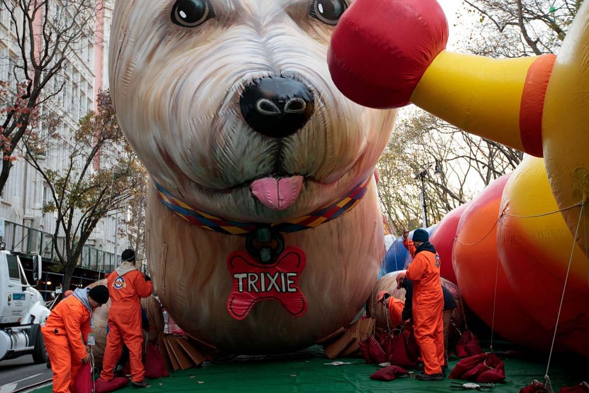 Volunteers anchor down the Trixie the Dog balloon prior to Thursday's Macy's Thanksgiving Day Parade in New York City on Nov 23, 2016.