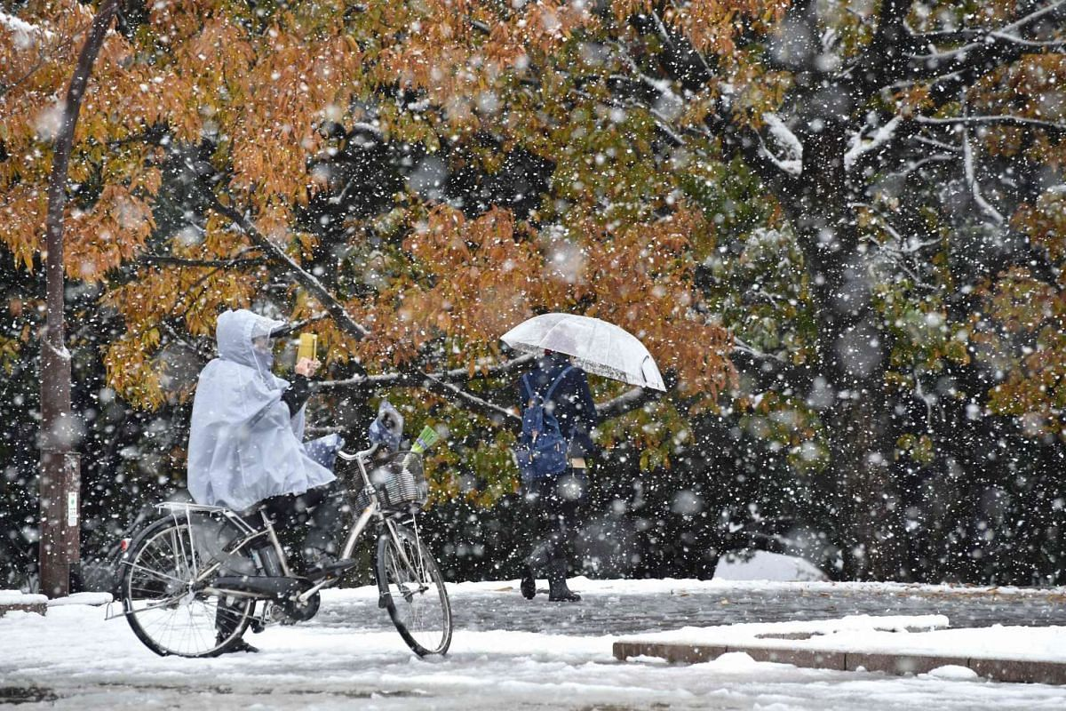 A cyclist takes a picture in snowfall in Tokyo on Nov 24, 2016.