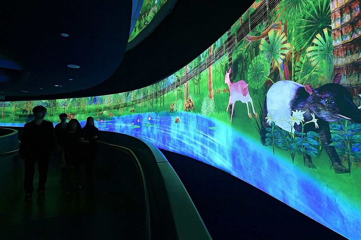 A tapir and a deer (above) are among the inhabitants in interactive installation Story Of The Forest, which brings to life works from the National Museum's William Farquhar Collection of Natural History Drawings.