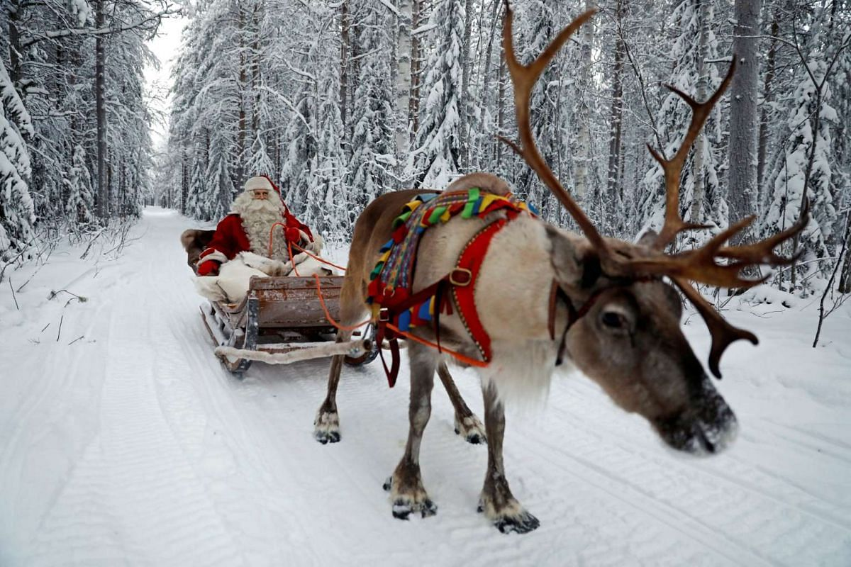 Santa as we know him best: A man dressed up as Santa Claus riding in his sleigh, complete with reindeer, in the Arctic Circle near Rovaniemi, Finland, on Dec 15, 2016.