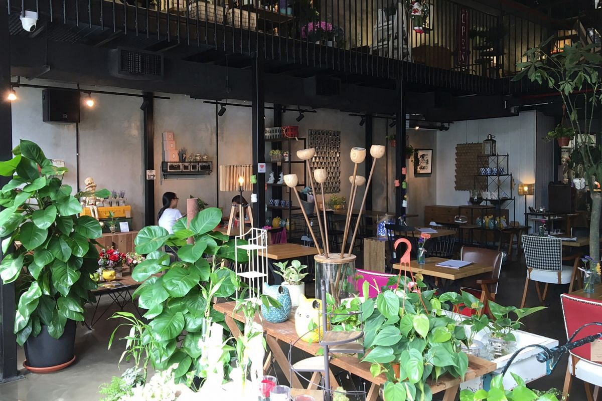 The plants in Knots Cafe and Living are changed every two days to keep things looking fresh.