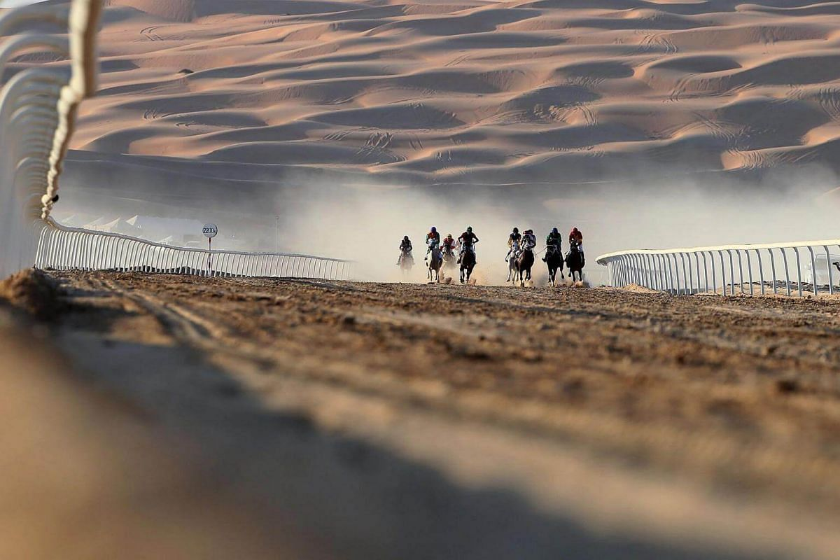 Jockeys compete in a race for purebred Arab horses during the Liwa 2017 Moreeb Dune Festival on Jan 3, 2017.