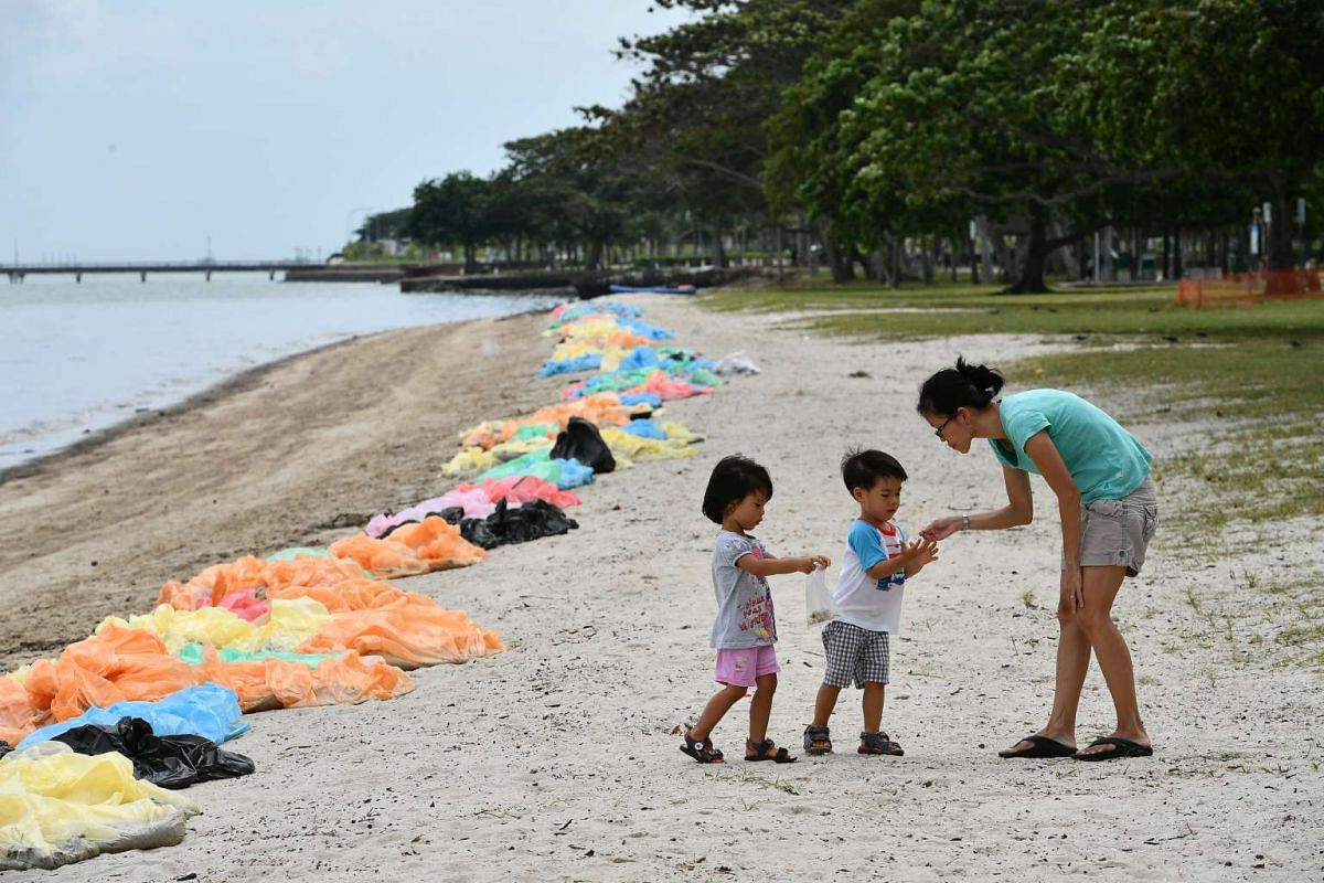 Children picking up seashells along the beach, as trash bags filled with oil stained sand line up along the shore at Changi Beach, on Jan 5, 2017.