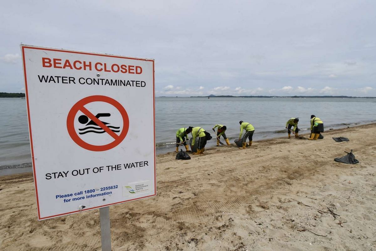 A warning sign is seen as workers pack oil stained sand into trash bags at Changi Beach on Jan 5, 2017.