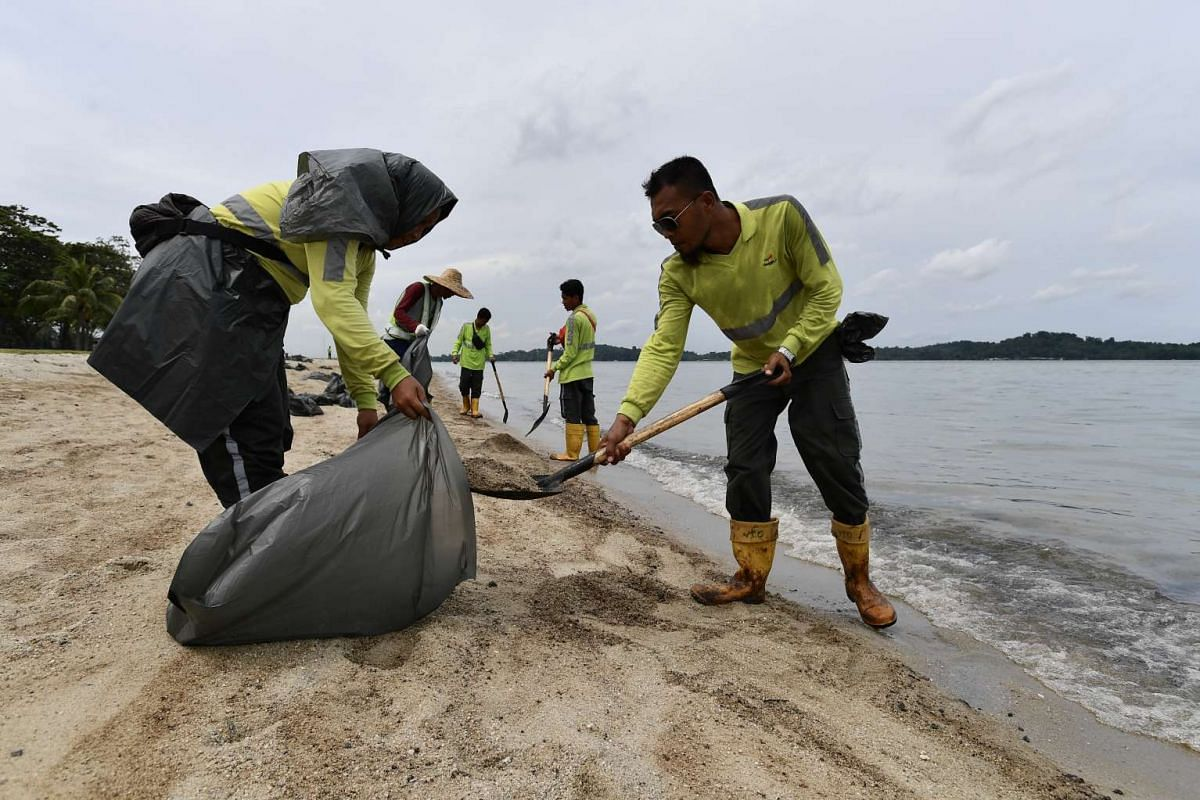 Workers packing the oil stained sand into trash bags at Changi Beach on Jan 5, 2017.