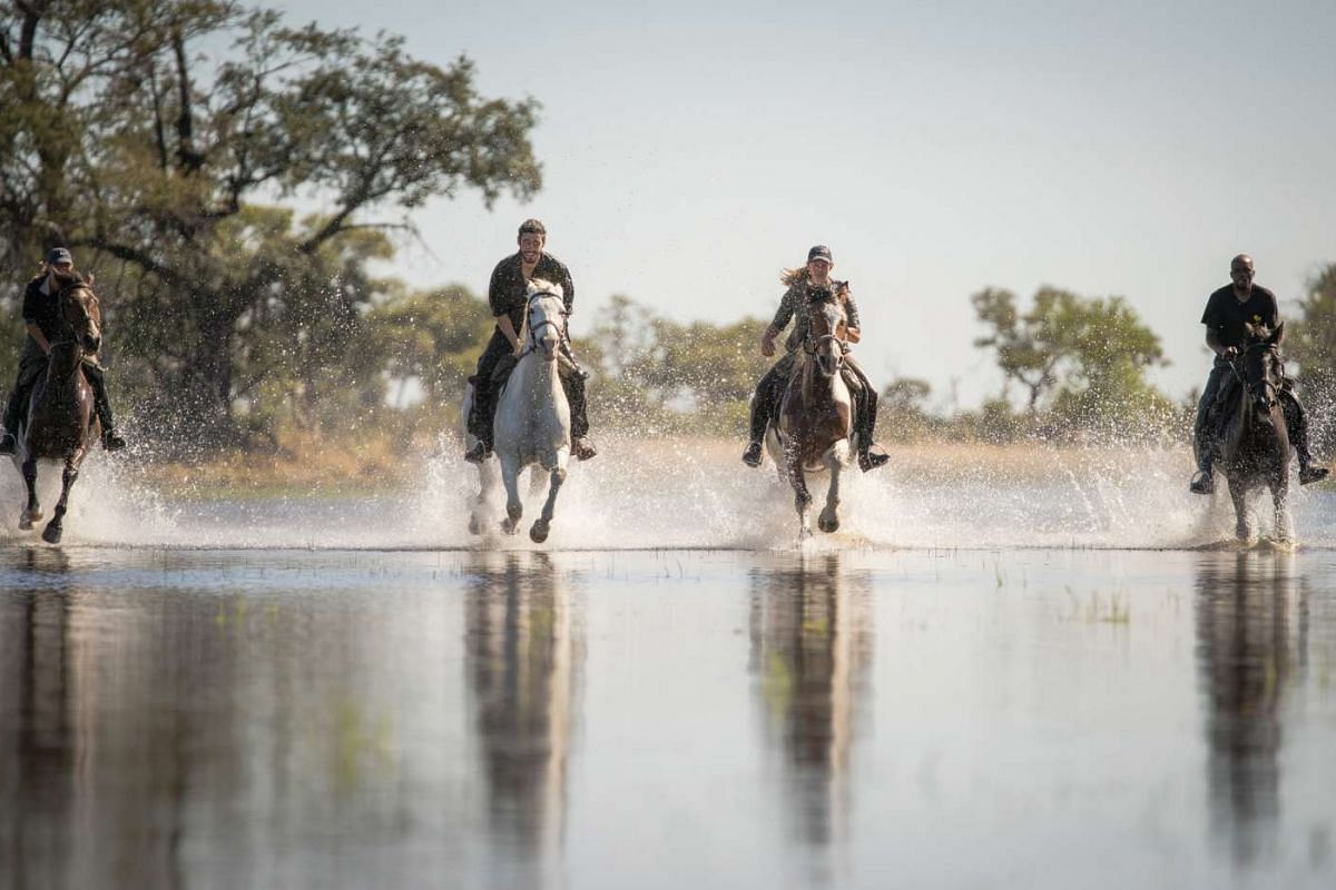 Experience a horse ride through the wilderness in Botswana before taking an aerial safari tour by helicopter.