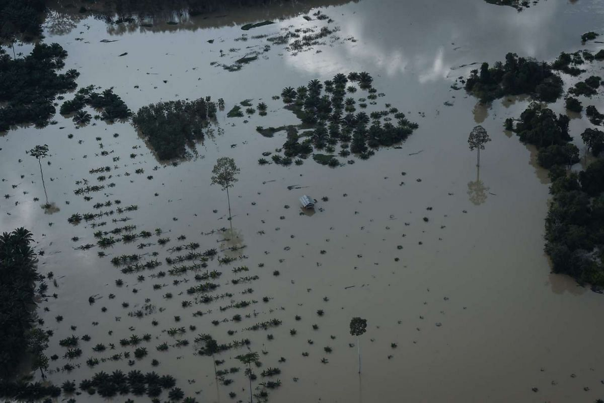 An aerial view of a house surrounded by floodwaters in Thailand's southern province of Surat Thani on January 11, 2017. PHOTO: AFP
