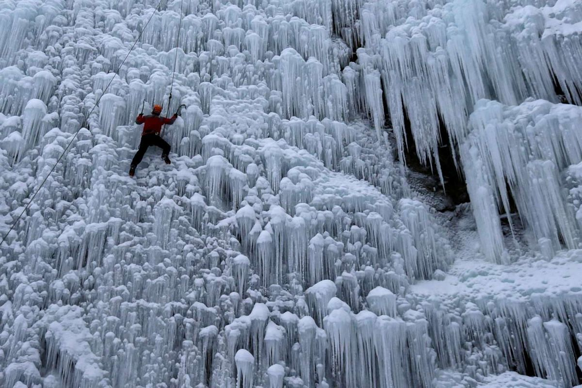 A man climbs an artificial wall of ice in the city of Liberec, Czech Republic, January 12, 2017. PHOTO: REUTERS