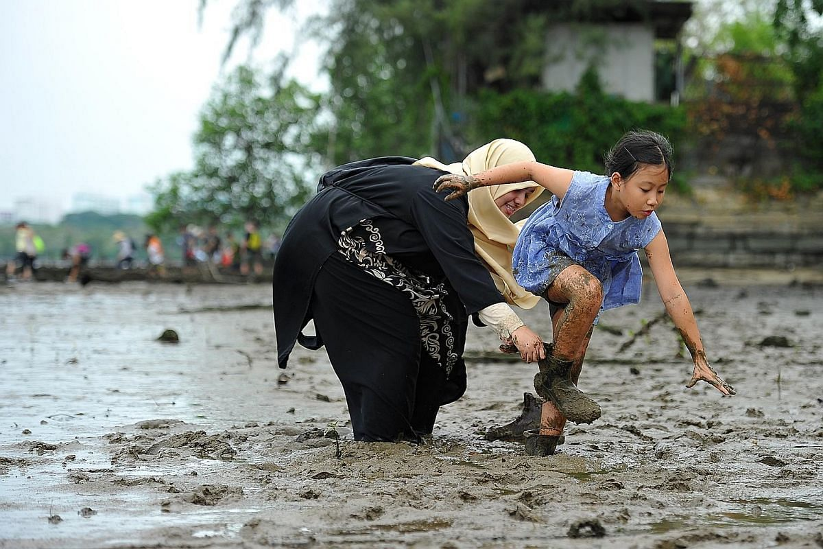 Ms Soh Lay Bee, a bank officer in her 30s, and marketing communication executive Loh Ming Yen, 30, changing out of their diving booties after a volunteer session. Their special footwear protects them from being sucked into the mud. (From left) Profes
