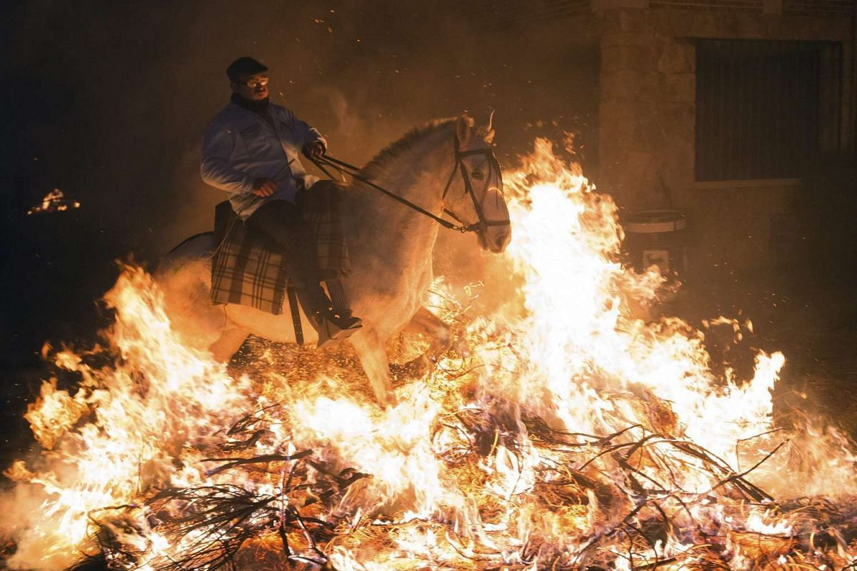 A rider goes through a bonfire at the Luminarias in San Bartolome de Pinares on Jan 16, 2017.